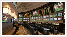 The Sports Lifestyle - Handicappers Corner
